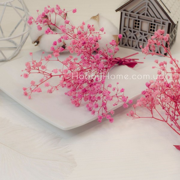 Гіпсофіла стабілізована Пухнаста , рожева