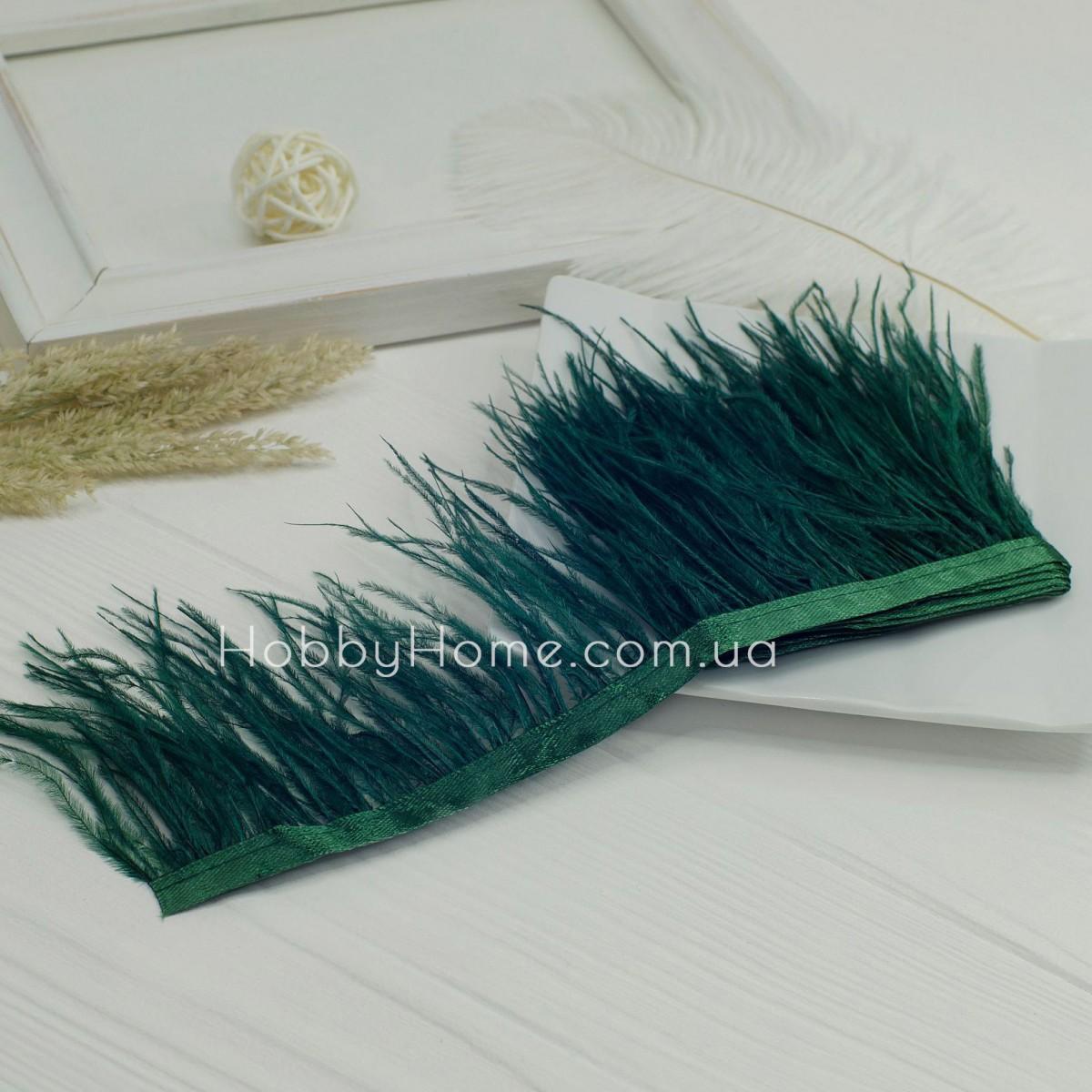 Пір'яна стрічка страуса 8-9см , смарагдова