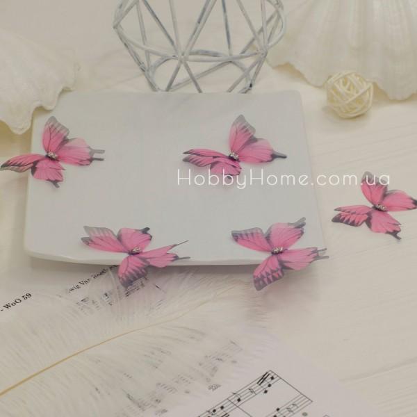 Метелики шифонові , пильно рожеві