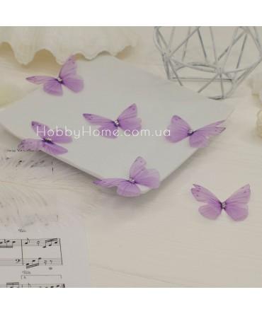 Метелики шифонові , ...